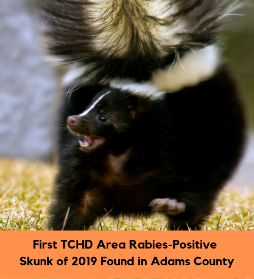 First TCHD Area Rabies-Positive Skunk of 2019 Found in Adams County