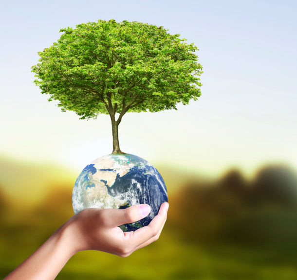 Digitally Modified Image of a Hand Holding the Earth with a Tree Growing Out of It